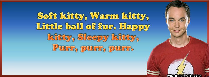 Image result for sheldon cooper soft kitty