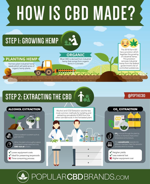 The Process Behind CBD Oil | Cbd-how it's made | Cbd hemp