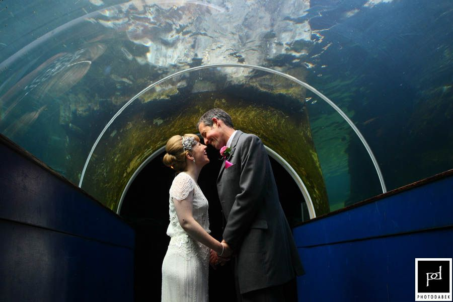 Bristol Zoo wedding photography - Aquarium