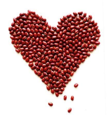 the kind diet bean heart