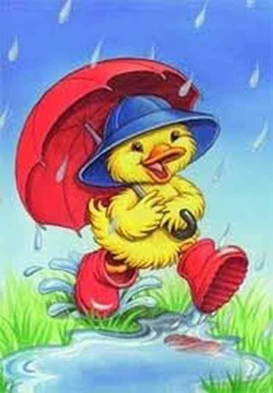 spring chick rainy day house flag duck in rain boots yard