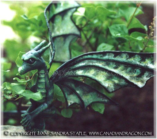 17 Best 1000 images about Dragon thoughts on Pinterest Gardens Baby