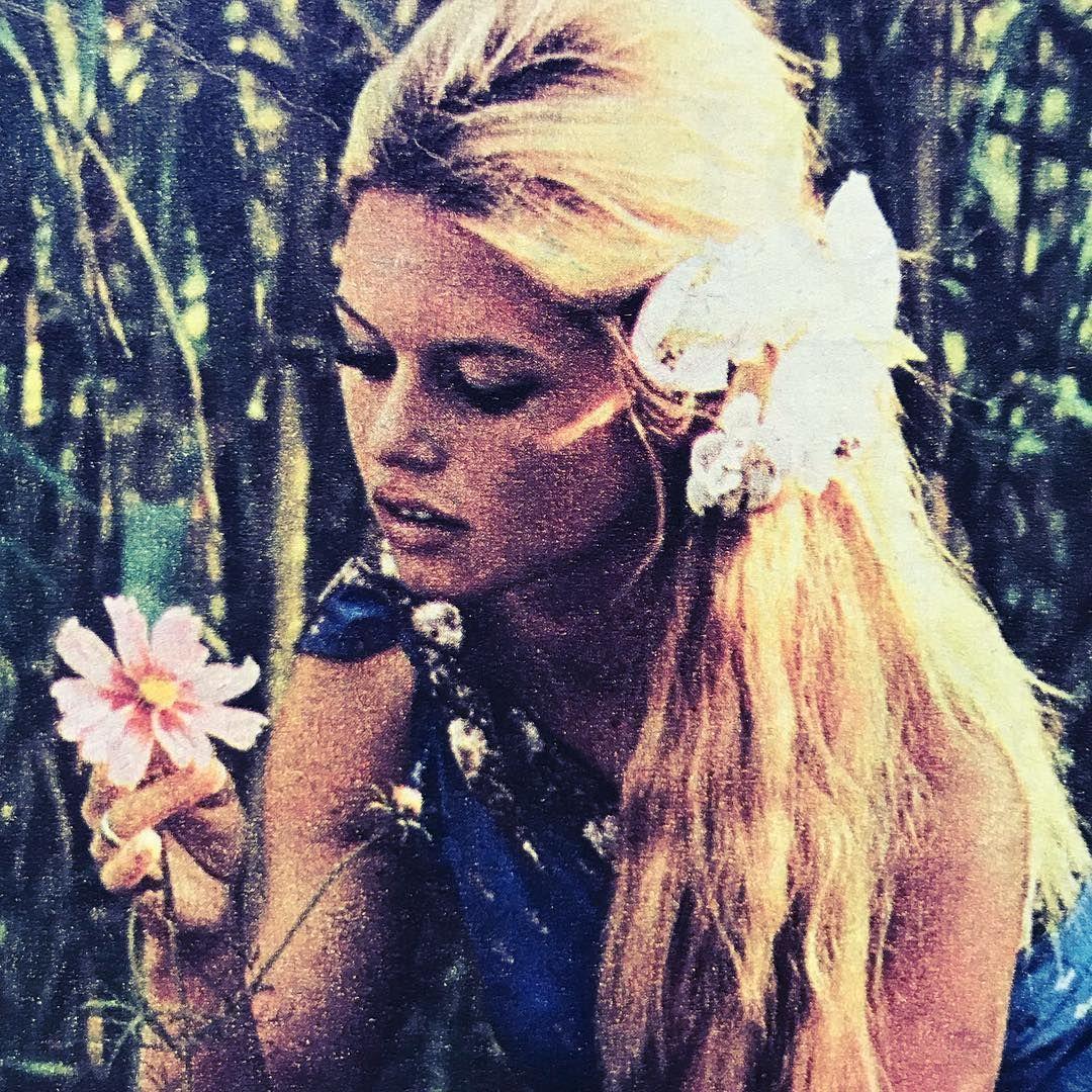 Brigitte Bardot брижит бардо S Photos Brigitte Bardot Brigitte Bardot