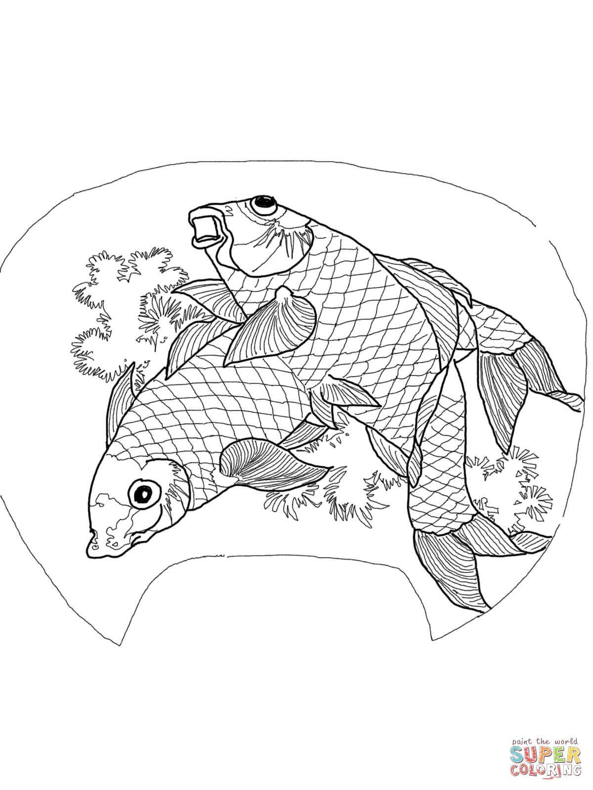 Due Carpe Di Katsushika Hokusai