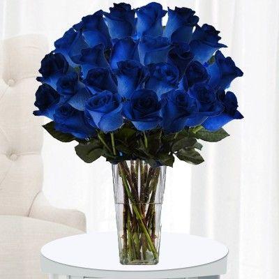 two dozen dark blue roses bright blue color roses send a