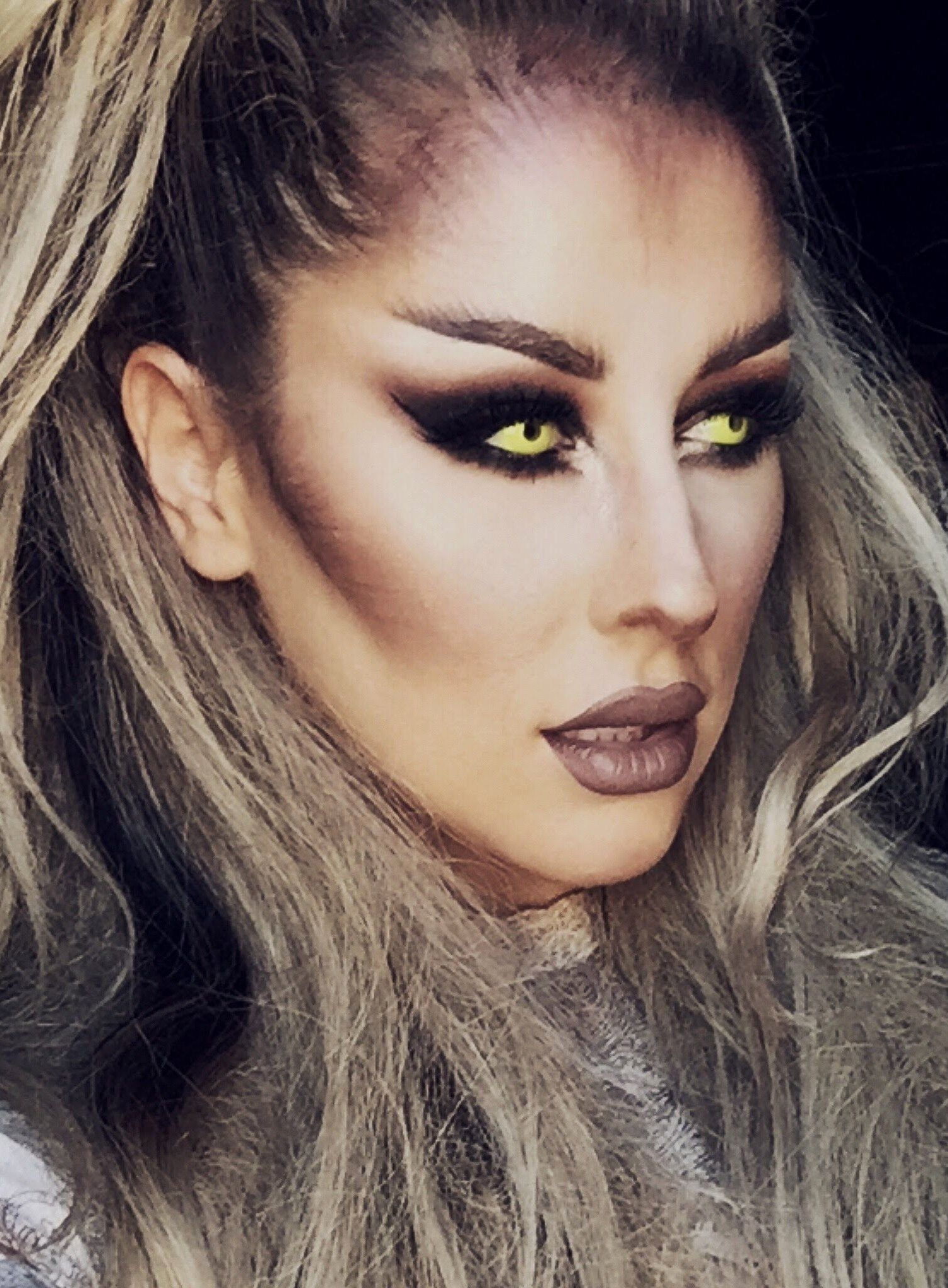 Image result for wolf makeup stylized (With images