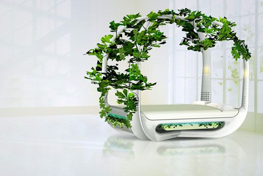 ecological bed