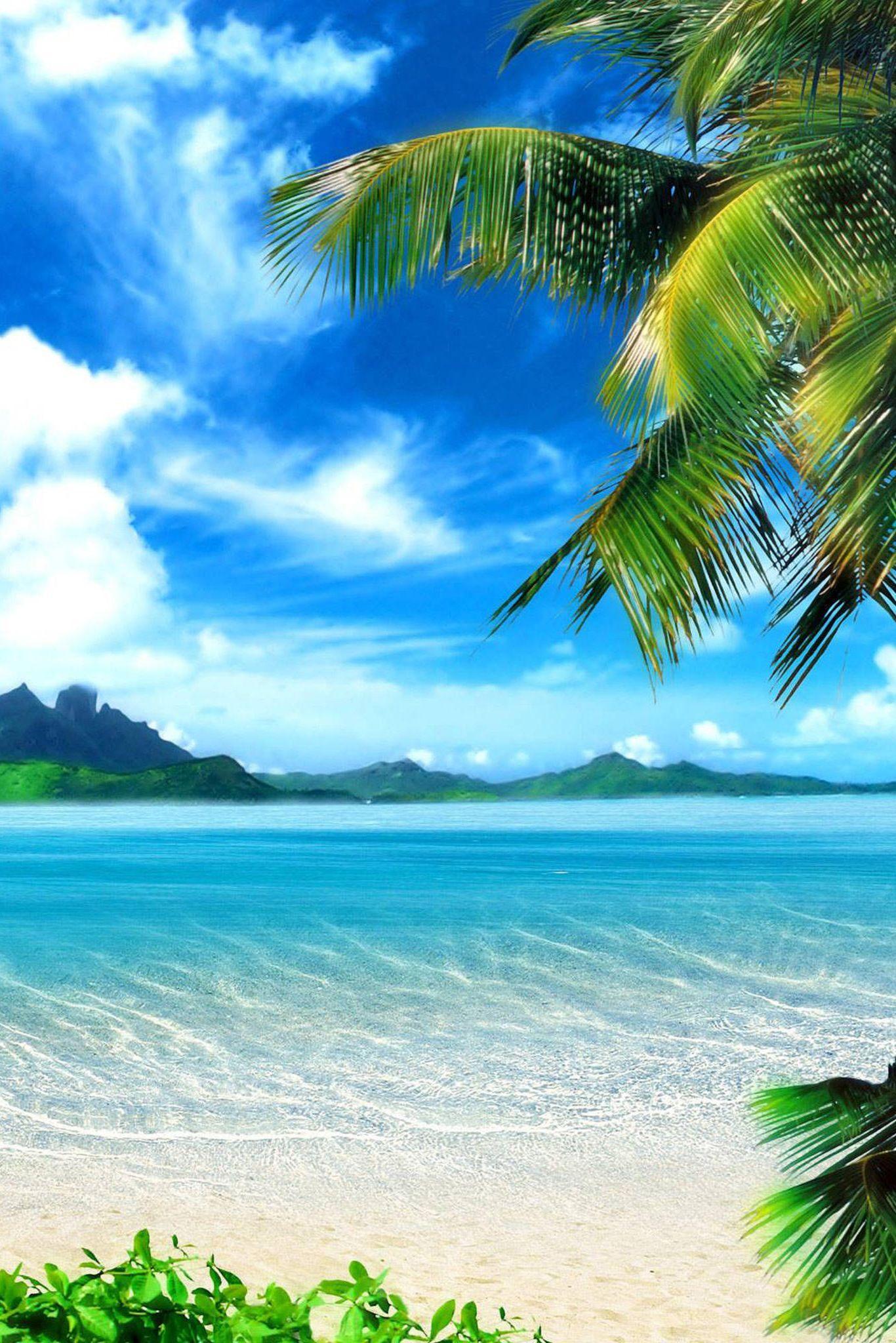 beach wallpaper iphone