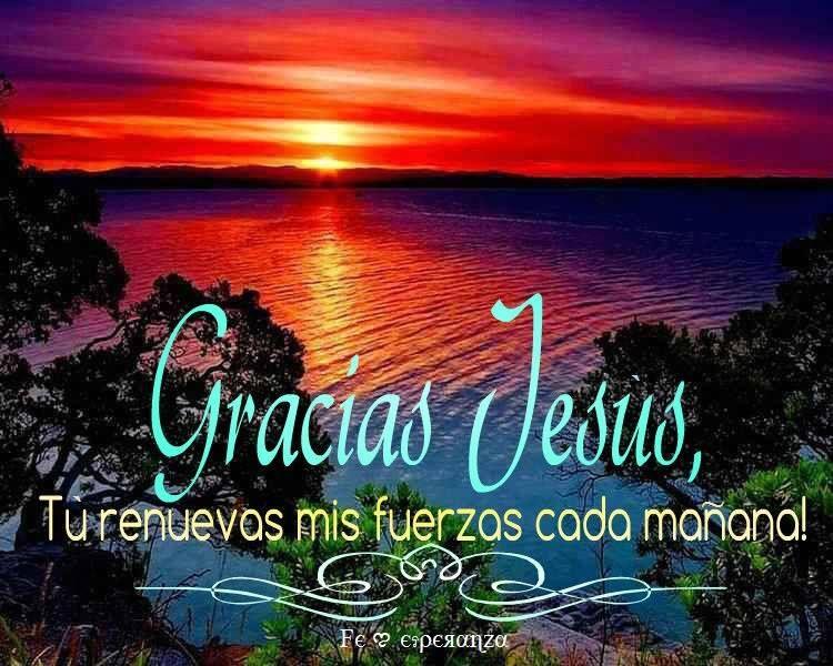 Gracias Jesús, tu renuevas mis Fuerzas cada mañana!