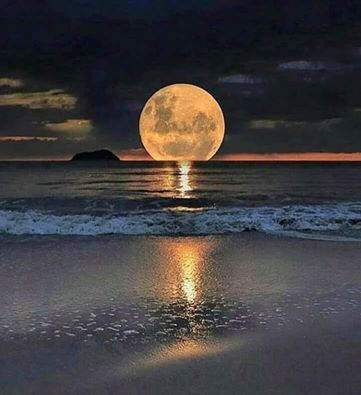 """Résultat de recherche d'images pour """"pinterest image de lune"""""""