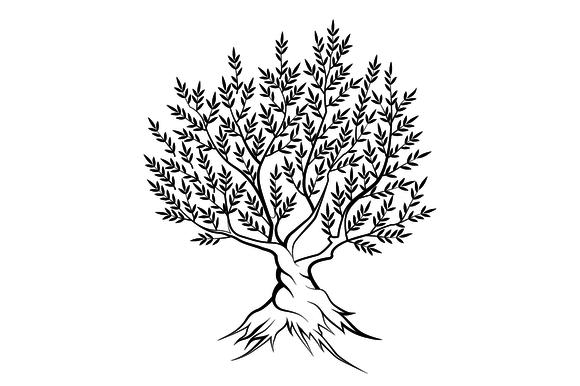 Vector Olive Tree Silhouette Olive Tree Painting Tree Silhouette Tree Silhouette Tattoo