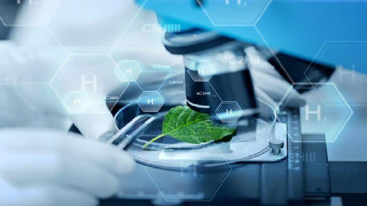 موضوع تعبير عن فضل العلم والعلماء بالعناصر Monsanto Genetics Technology