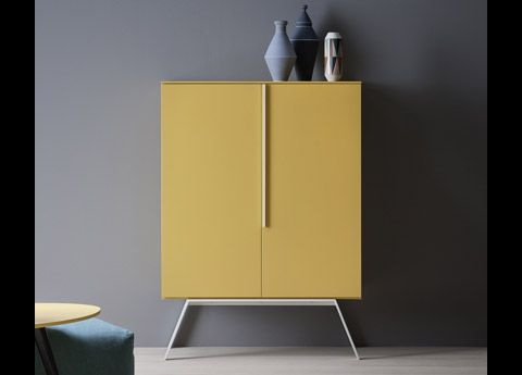 Cleo Contemporary Cupboard