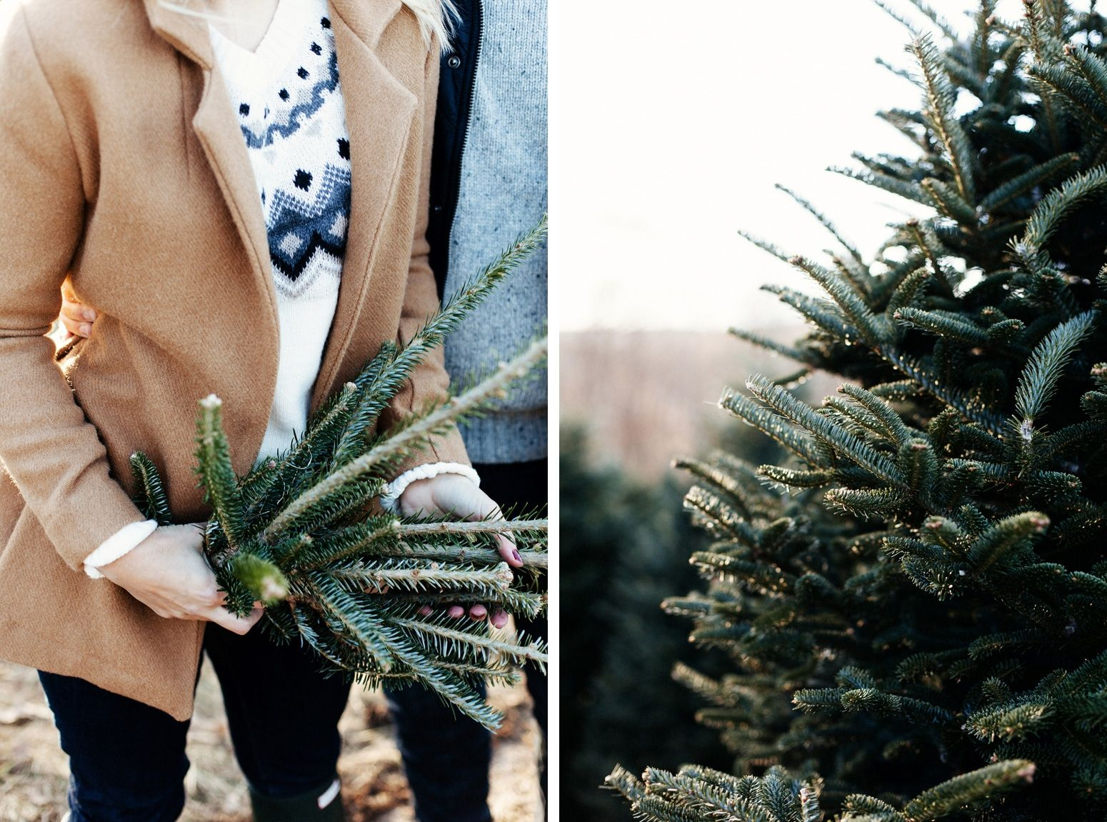 Boone Christmas Tree Hunt Lifestyle Shoot Christmas tree
