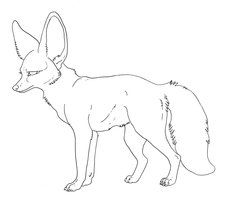 Bat Eared Fox Coloring Page Free Lineart Bat Eared Fox 4 Years