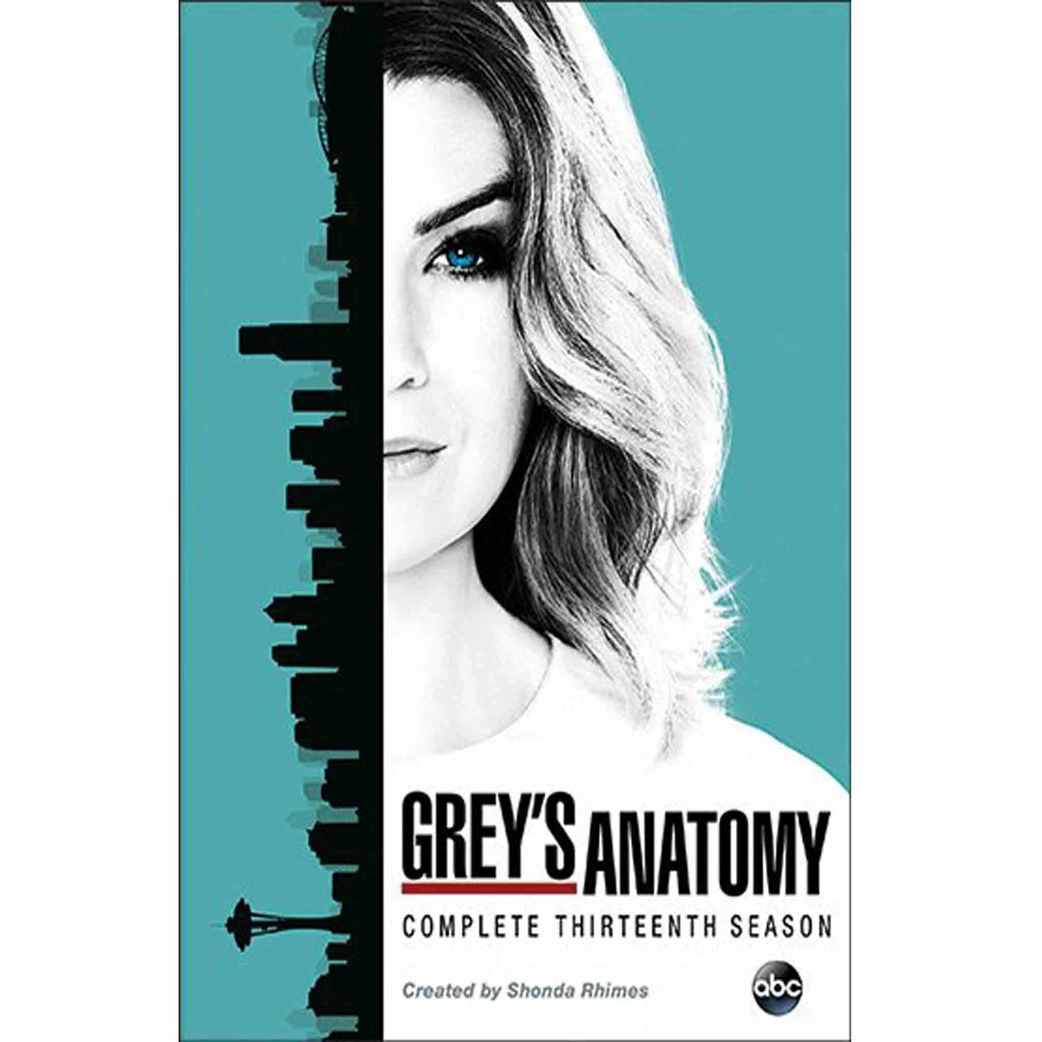 Grey\'s Anatomy: The Complete Thirteenth Season | Anatomy, Grays ...