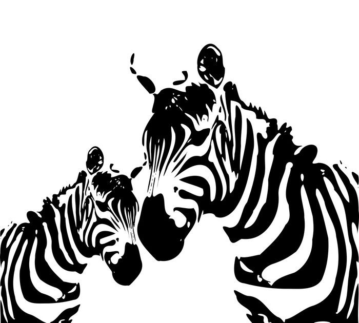 Zebra love black and white pictures from 39 99 http www wallartprints