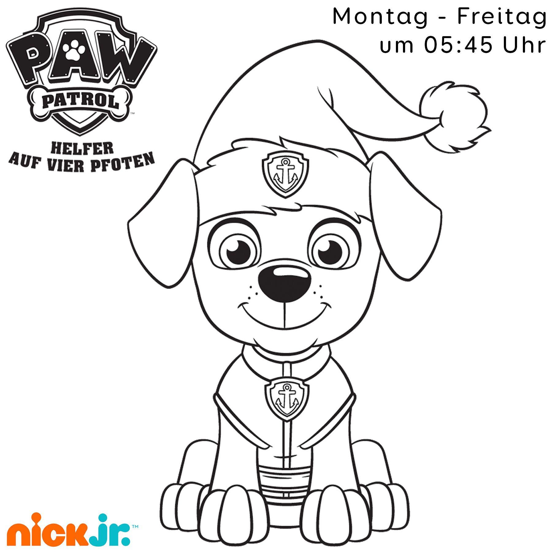 paw patrol gewinnspiel  nickch  ideias riscos