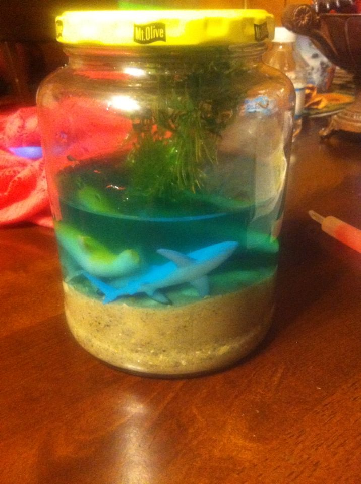 My 3rd grader's ecosystem project/ saltwater | craft