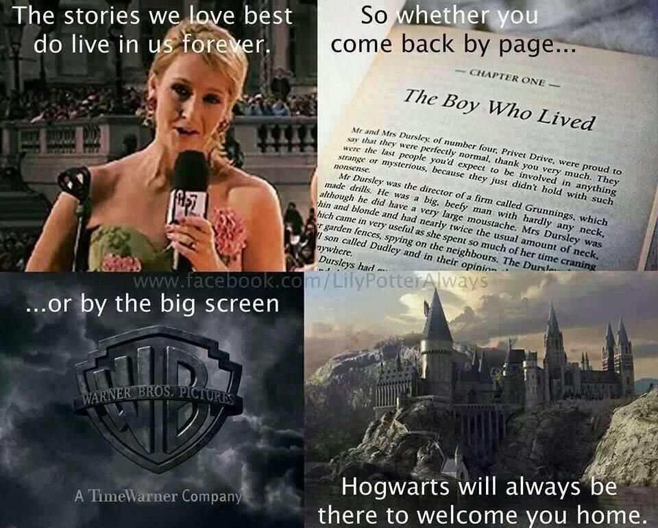 Quotes Harry Potter Obsession Harry Potter World Harry Potter Fandom