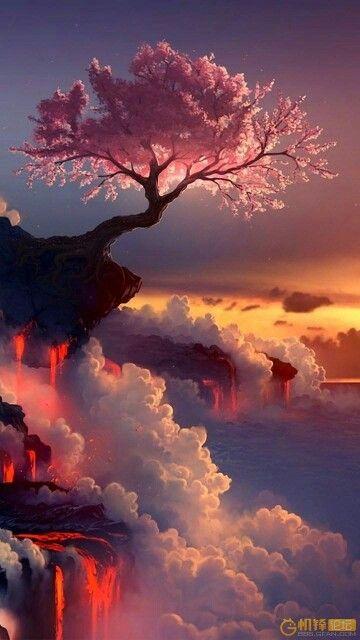 Pin By Afreen Alam On F O T O G R A F I A Beautiful Landscapes Nature Amazing Nature
