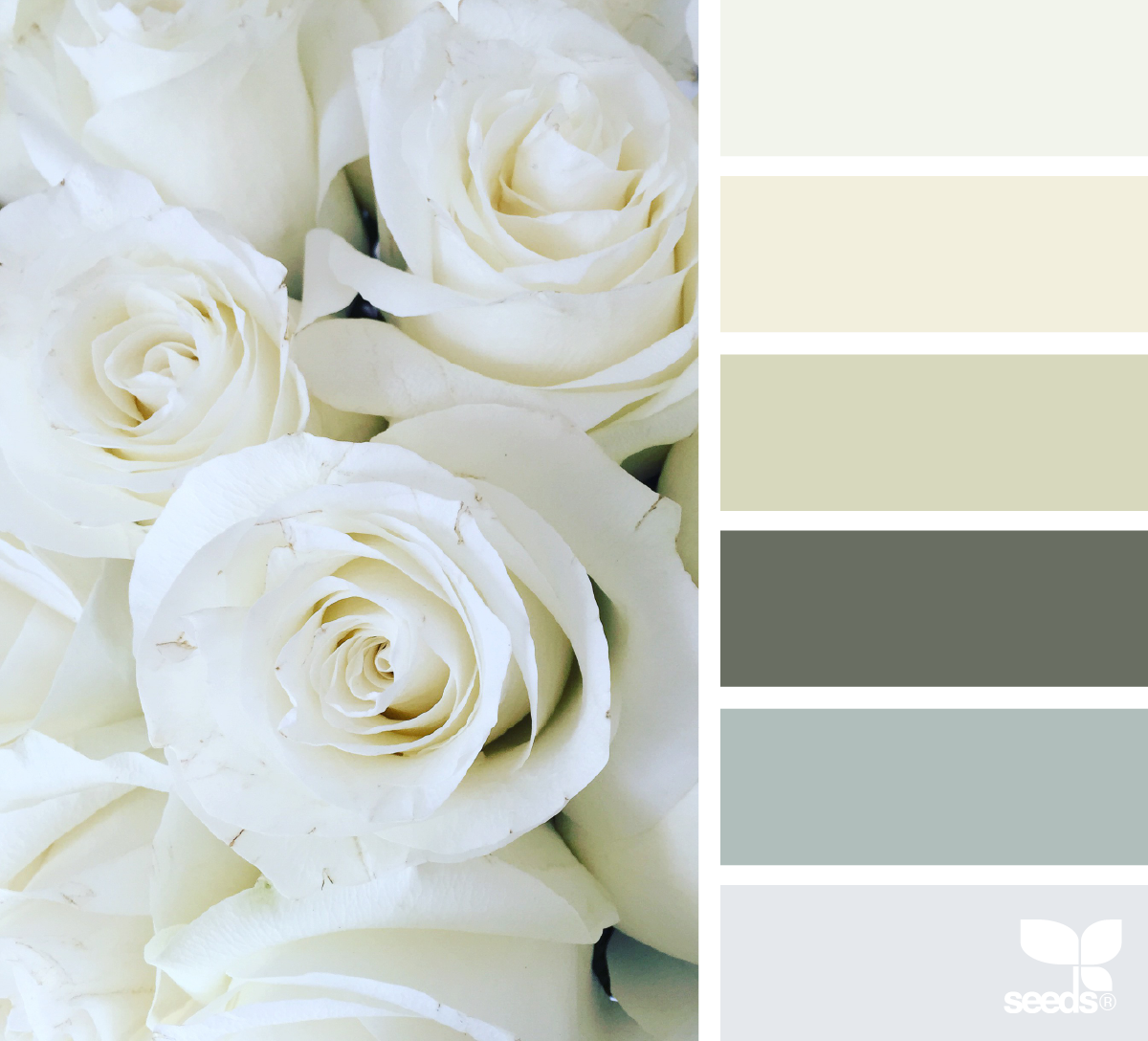 rose tones design seeds palettes misc palette design seeds rh pinterest com