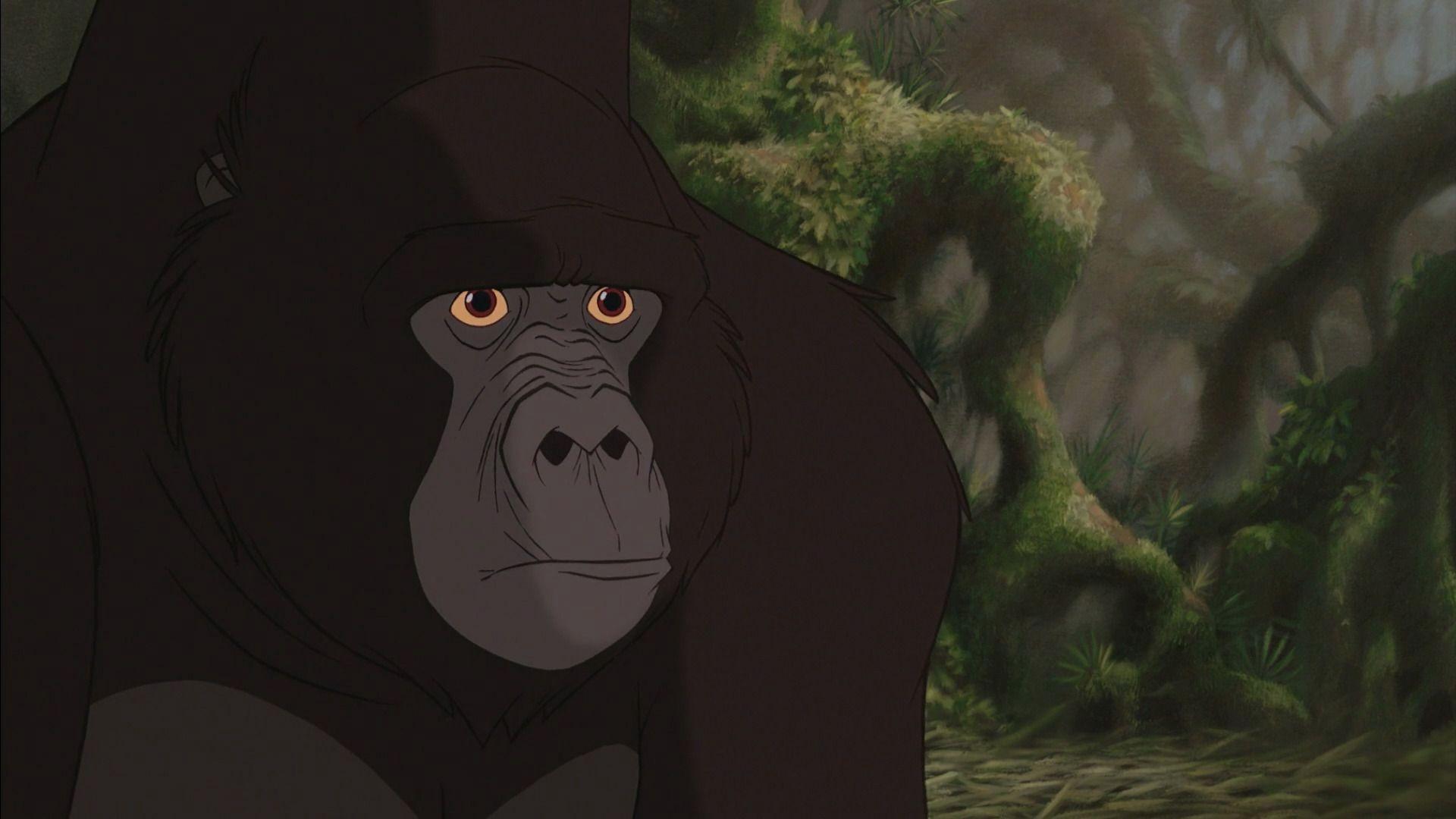 Kerchak tarzan and disney s - Tarzan gorille ...