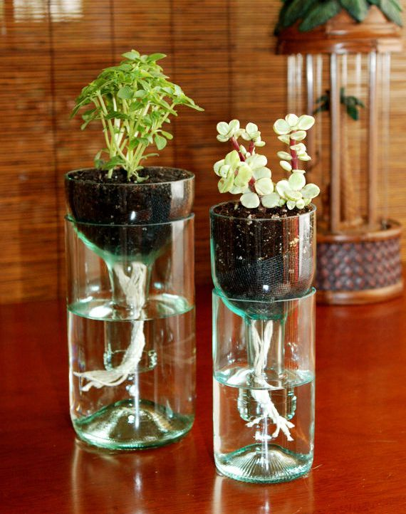 Ideas To Decorate Glass Bottles 5 Inexpensive Diy Home Décor Ideas  Planters Glass And Craft