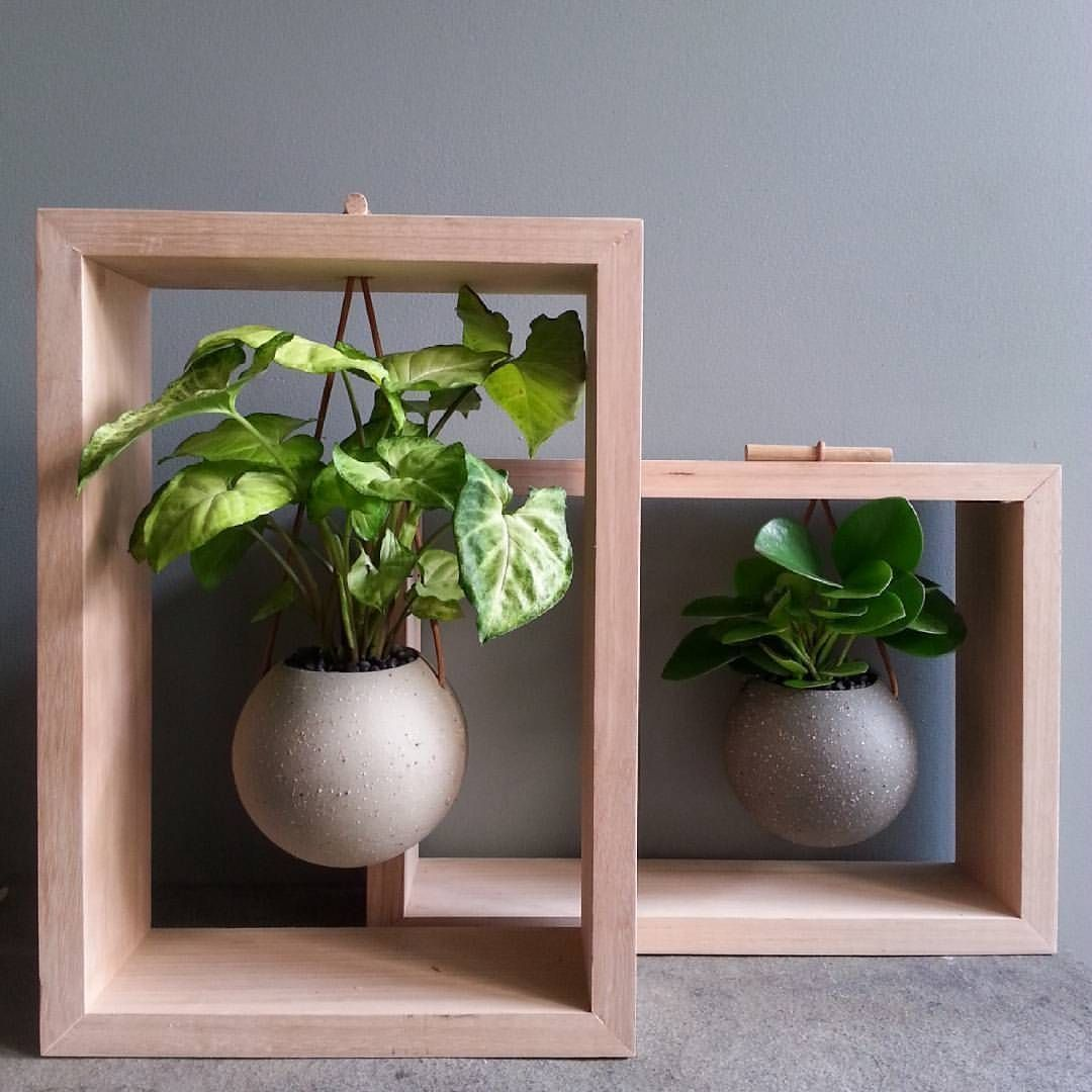 41 Best Framed Planters Add Living Art to Your Walls is part of  - Living plant walls have been popular for years and now there's a minimalist way to turn succulents and airplants into works of art  These simple, yet elegant planters are perfect for highlighting greenery, while still maintaining a sleek aesthetic  Continue Reading →