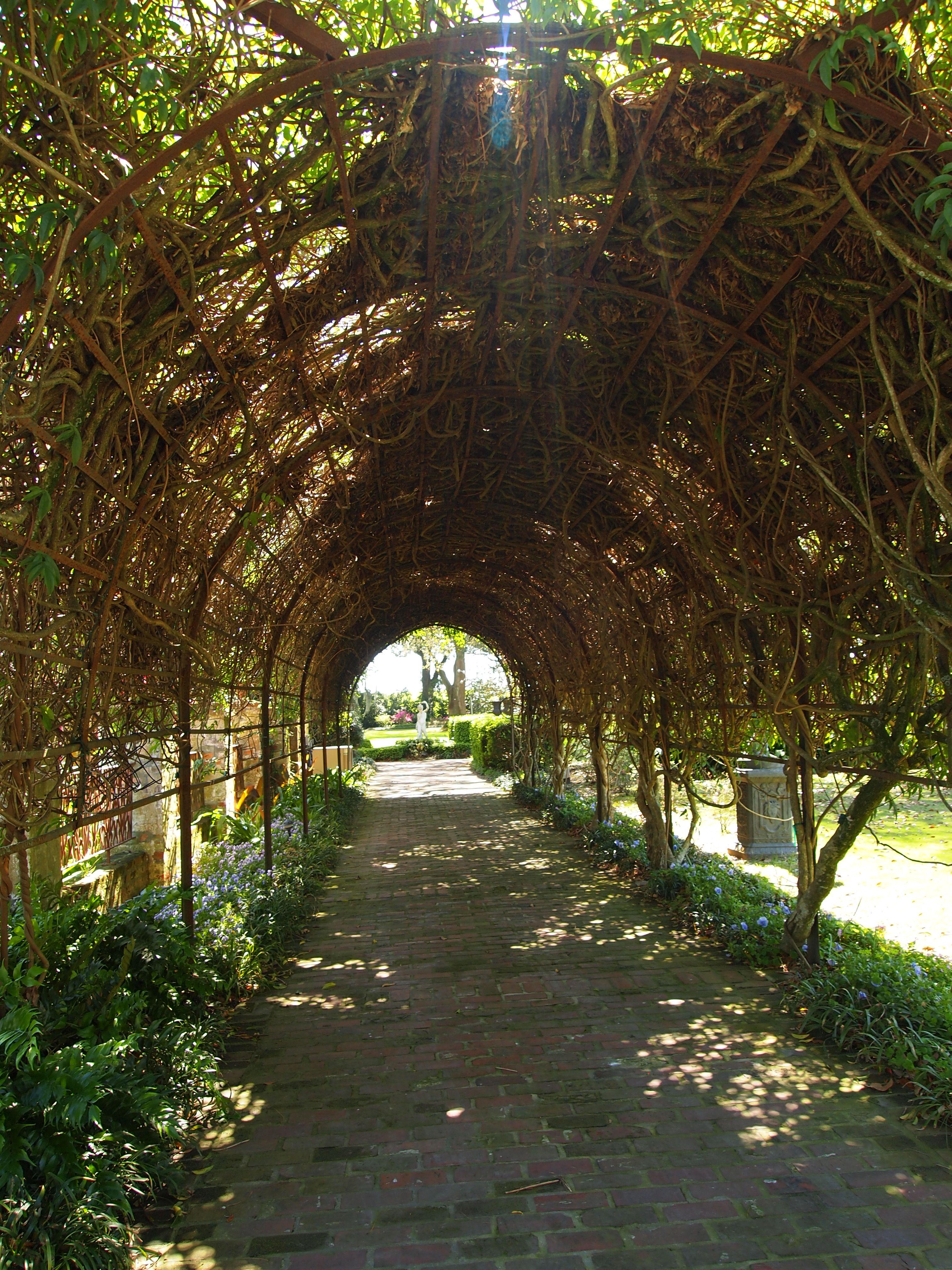 The Gardens at Houmas House Plantation, Louisiana. | Favorite Places ...