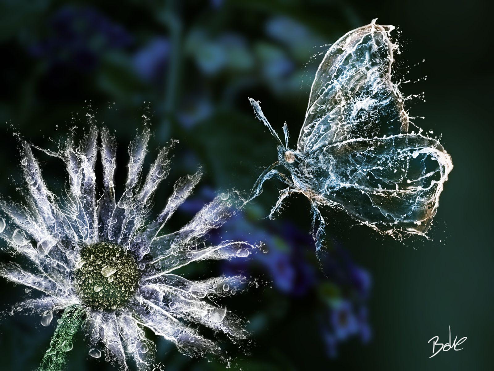 1000 Natural Wonders: Sascha Bokelmann Feature - Photo Manipulation
