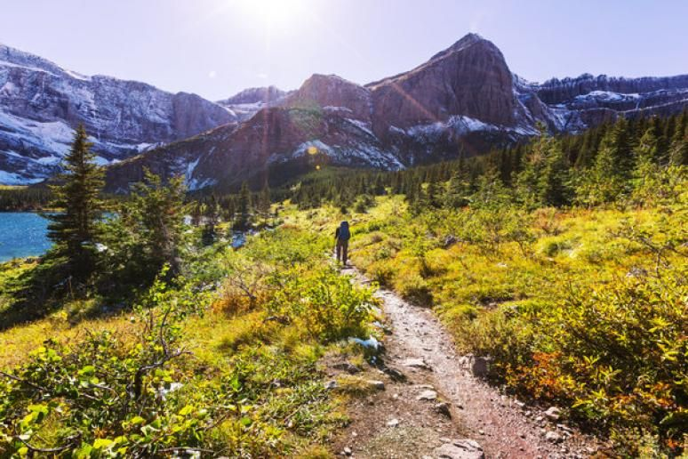 The 6 Best Hikes in Glacier National Park Most visited