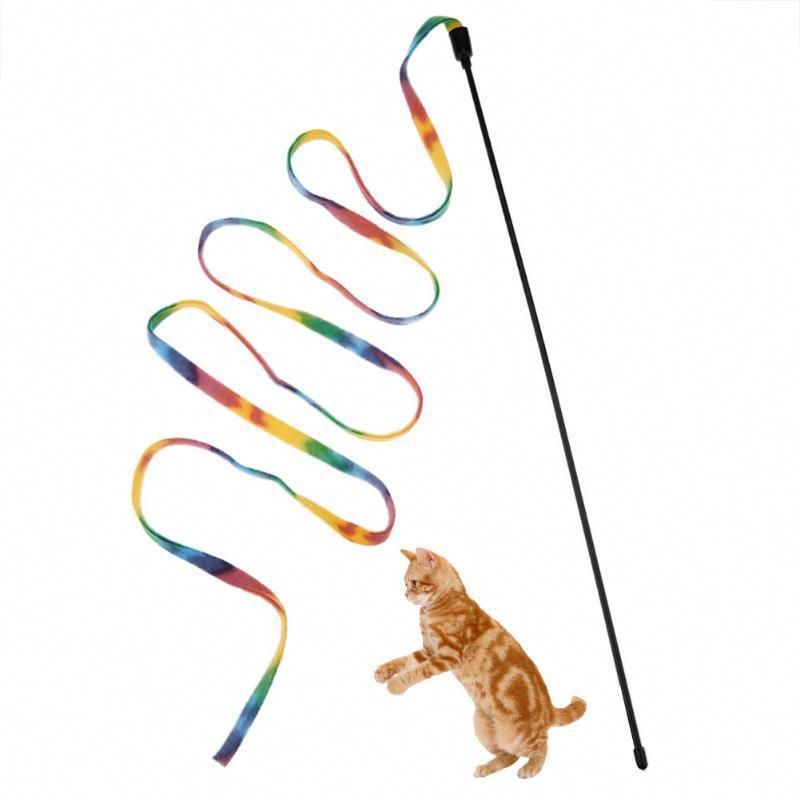 Cats Craigslist Catseatinggrass Id 5241574408 Cat Toys Cat Vs Dog Cats For Sale