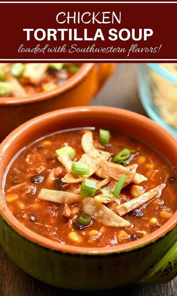 Black Bean and Chicken Tortilla Soup Recipe | Onion Rings & Things