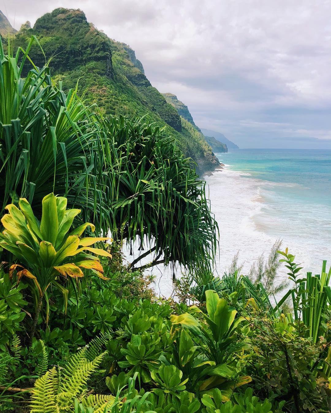 Kauai Hawaii The Dramatic Na Pali Coast With Misty Jungle Scenery On One Side And Crashing Blue Ocean Waves Kauai Travel Hawaii Travel Hawaii Travel Guide