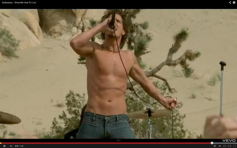 Chris Cornell Show Me How To Live And I Said Show Me How Not