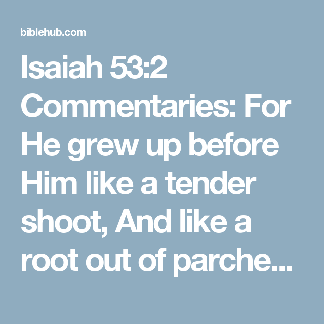 Rose Glen North Dakota ⁓ Try These Isaiah 53 Commentary