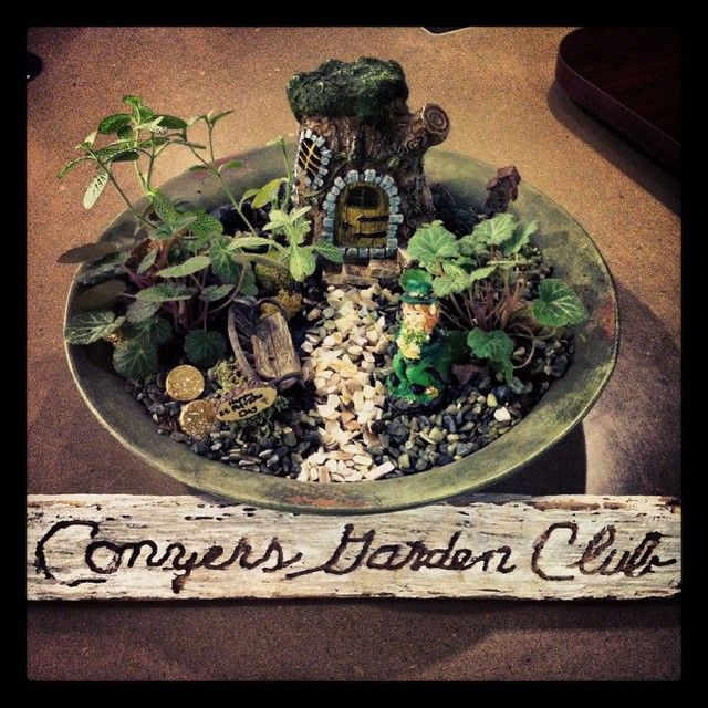 A big THANK YOU to our thoughtful friends in the Conyers Garden Club! They brought us this beautiful St. Patrick's Day arrangement for our Circulation desk. We're LUCKY to have them :) | #GardenClub #ConyersRockdaleLibrary www.conyersrockdalelibrary.org