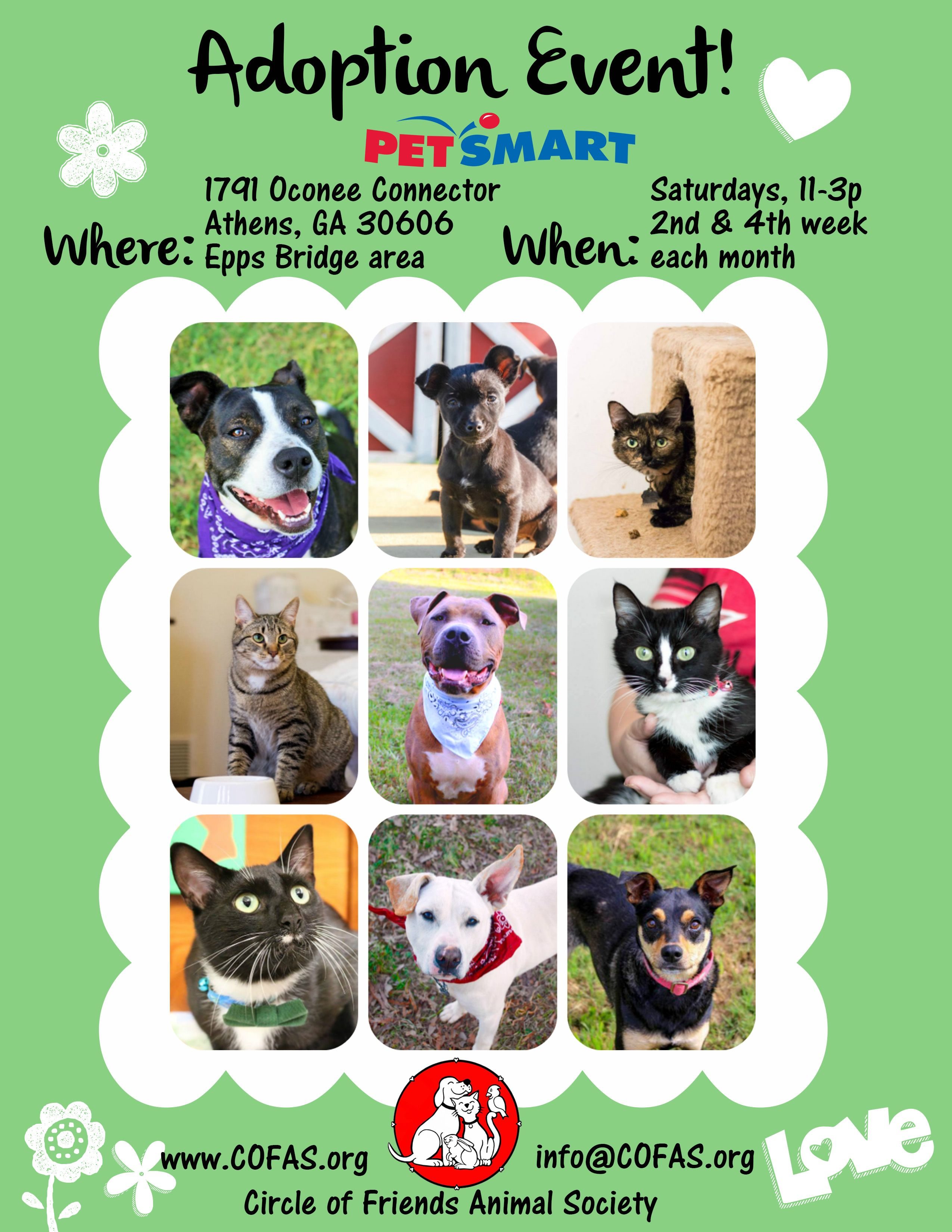 Event Flyer Simple Animal Society Event Flyer Animals