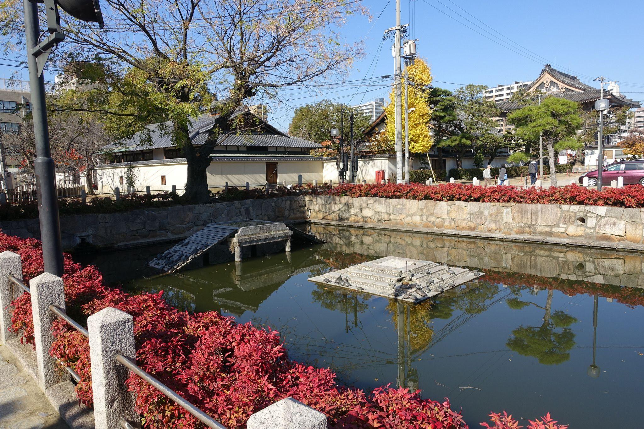 f810df7e874f3ac6c69e1990deec1764 Frais De Aquarium Osaka Concept