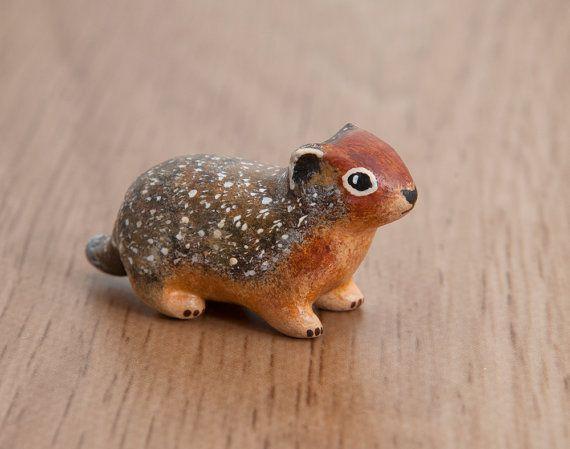 columbian ground squirrel animal