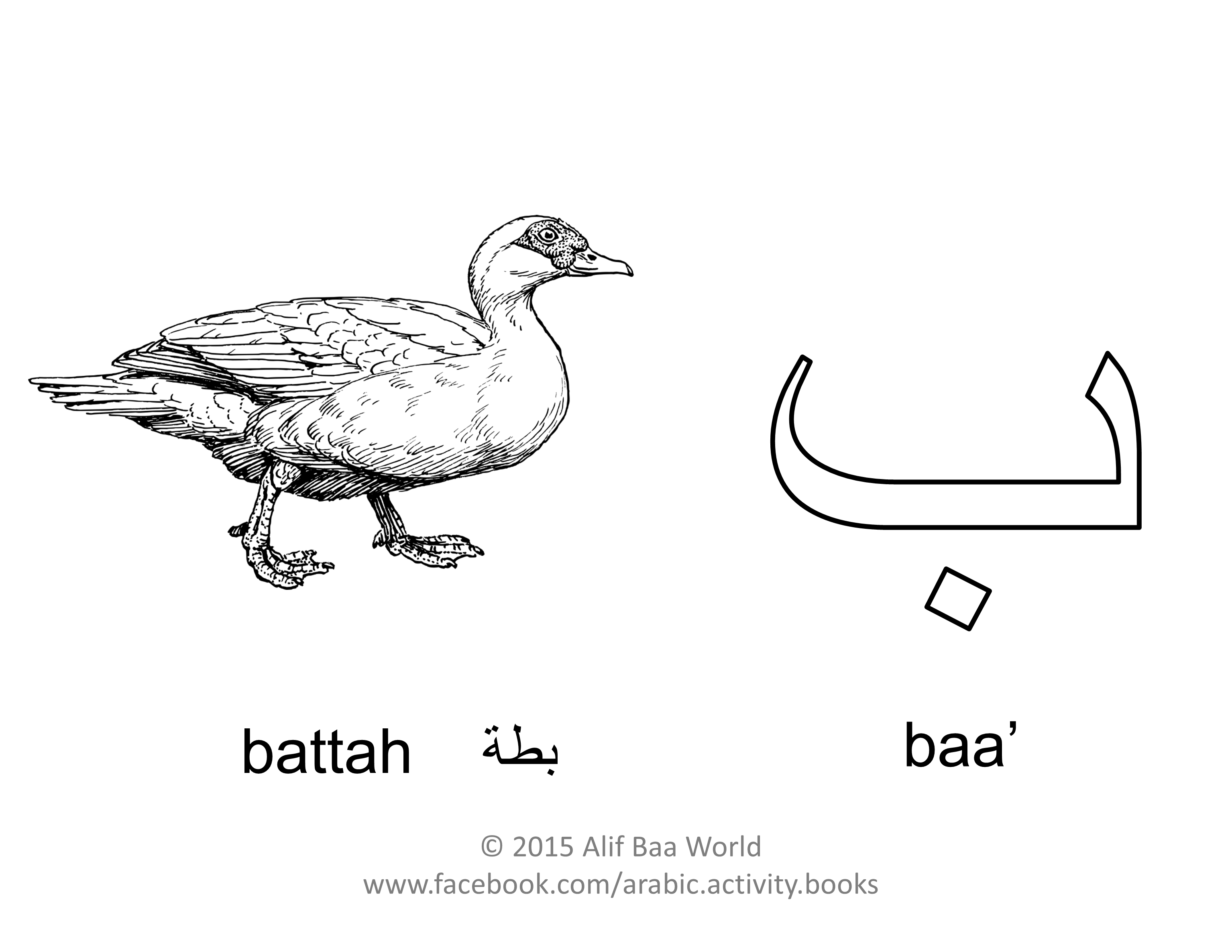 The Second Letter Of Arabic Alphabet Is Name Baa Sound B For Pronounced Battah English Duck Print And Color Animal