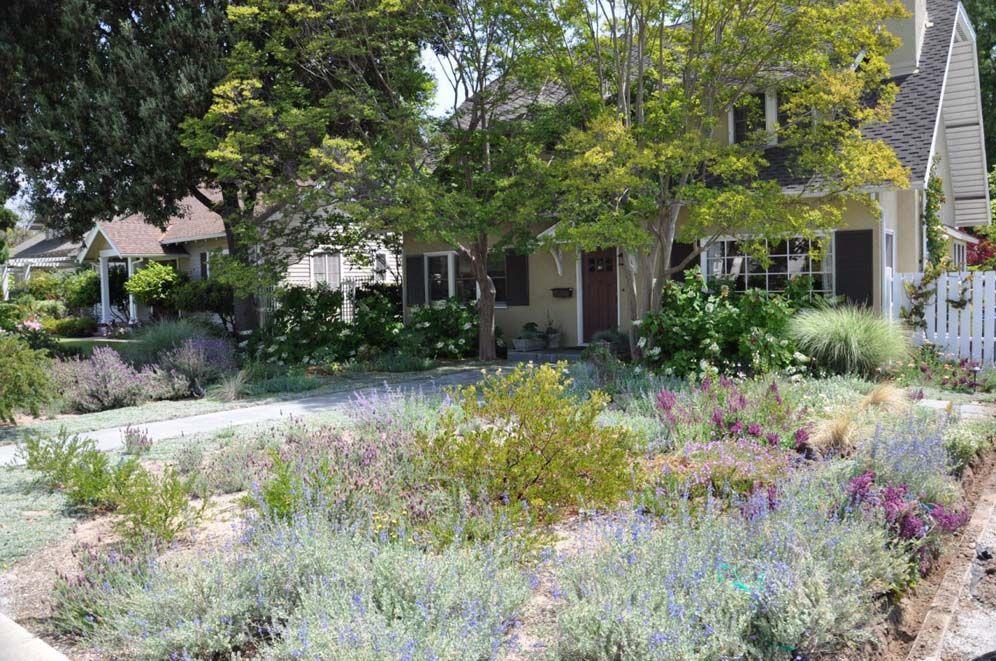No Mow Front Yard | Mow yard, Front yard, Dream yard on No Mow Backyard Ideas id=25371