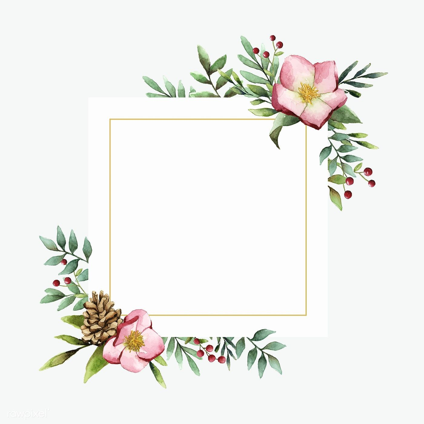 Hellebore Flower Frame Painted By Watercolor Vector Free Image