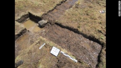 Excavation site at Point Rosse in Newfoundland.