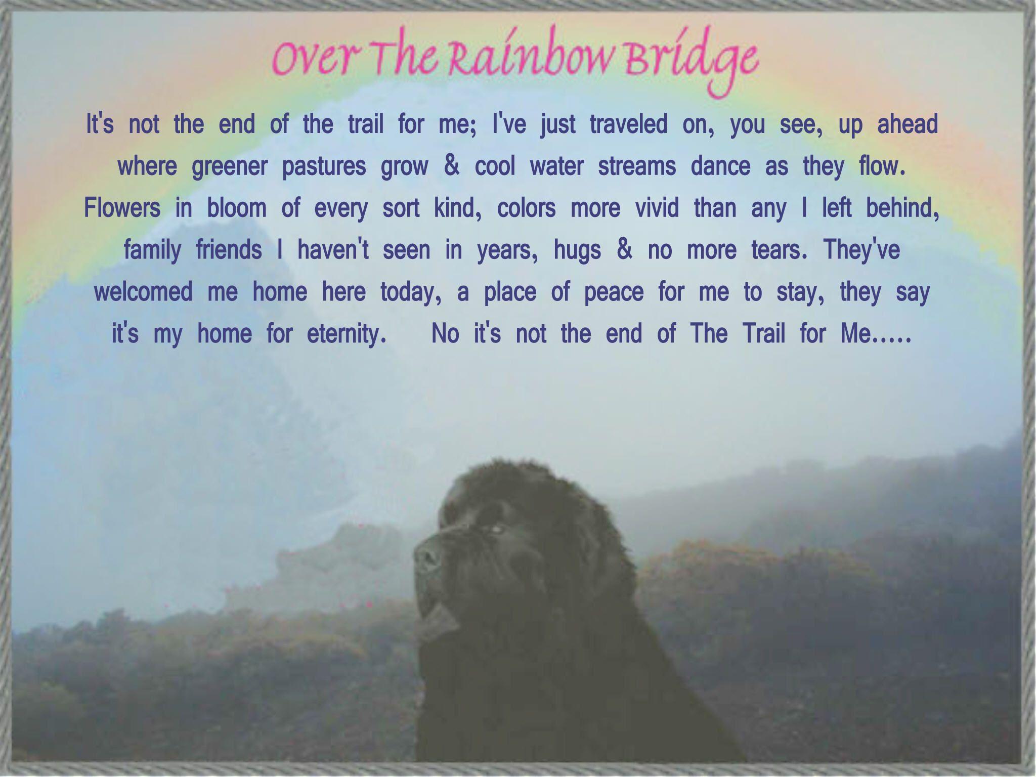 Over The Rainbow Bridge Rainbow Bridge