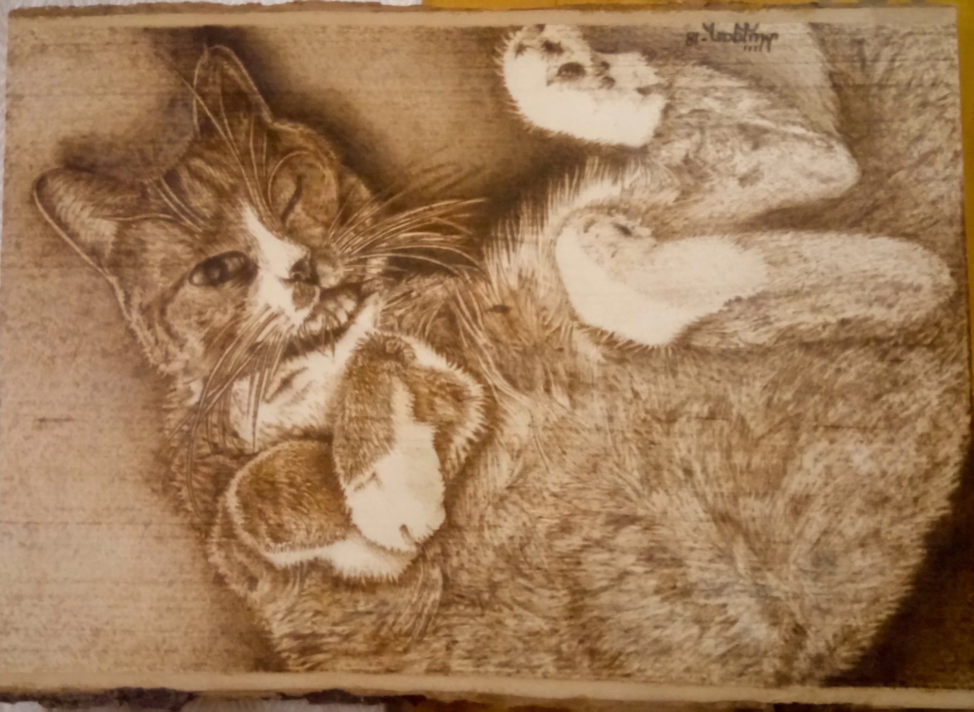 Pyrography Animal Portrait Cat