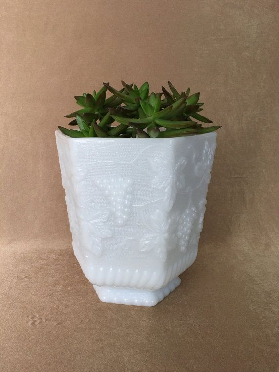 Outdoor Planters White Milk Glass 3d House Drawing