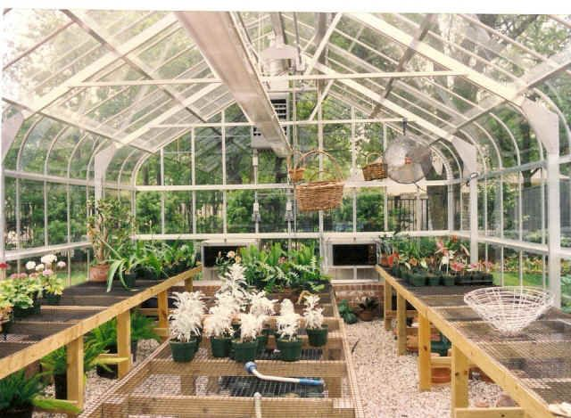 Greenhouse interior images google search greenhouses for Greenhouse over swimming pool