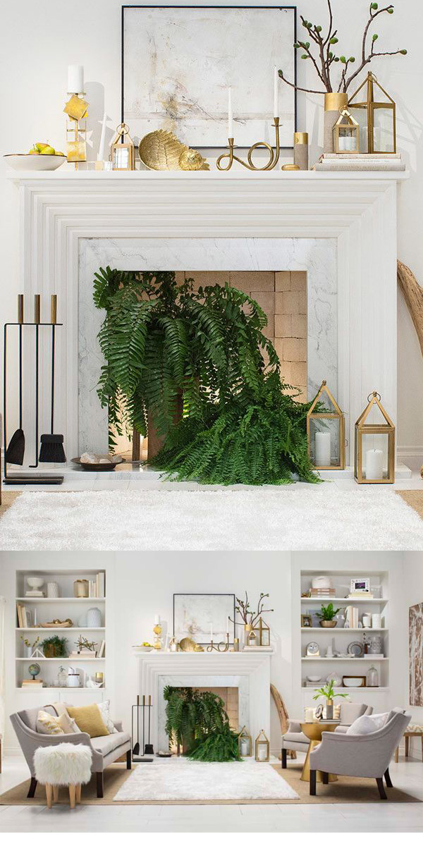 Ferns in the Fireplace | Dining room fireplace, Living ...